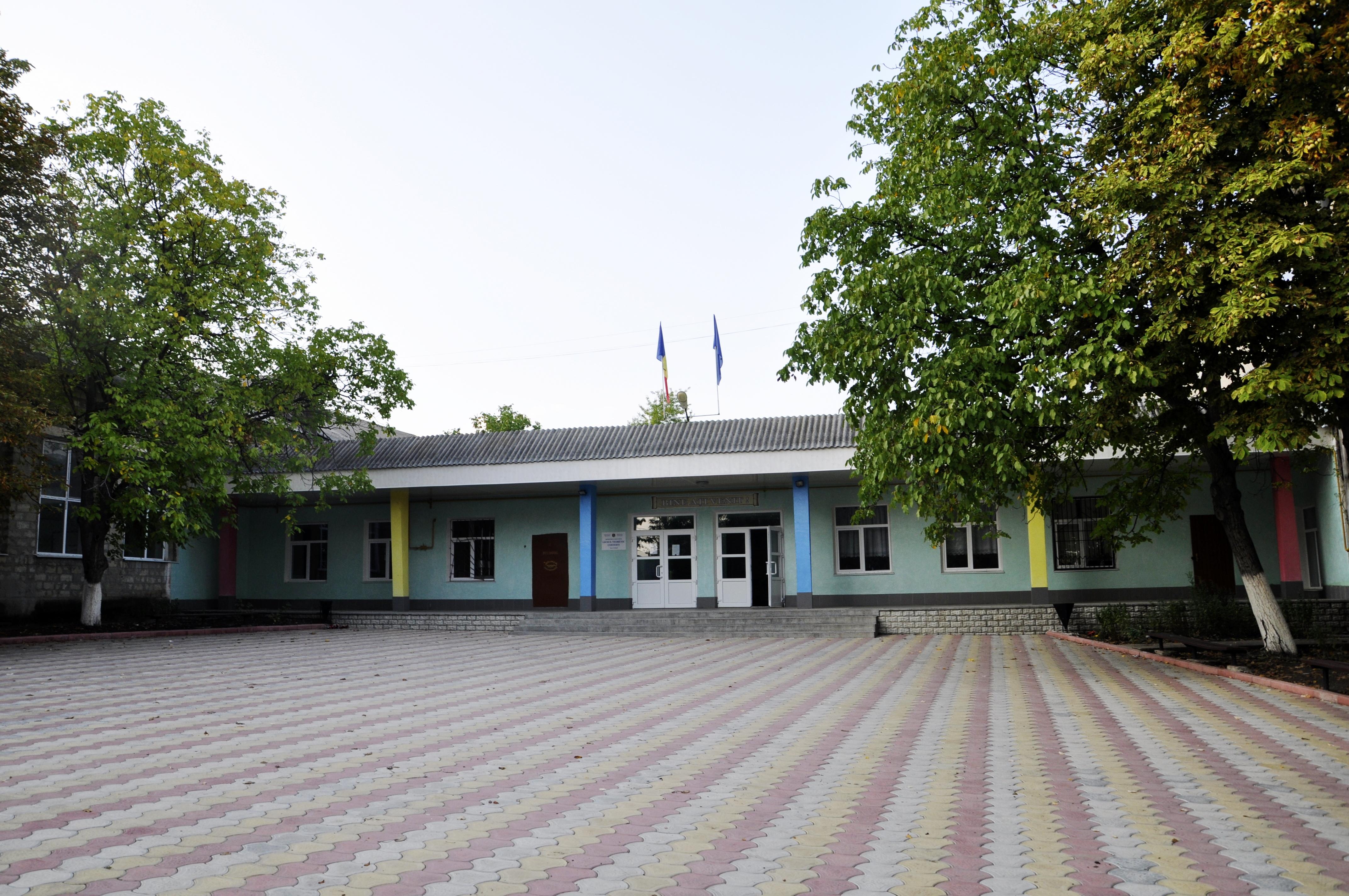 """Liceul Teoretic """"Costești"""""""
