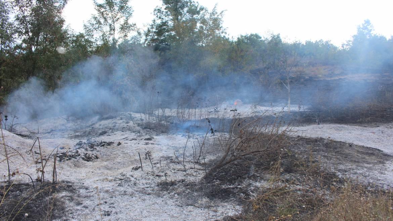 Incendiu major în satul Costești