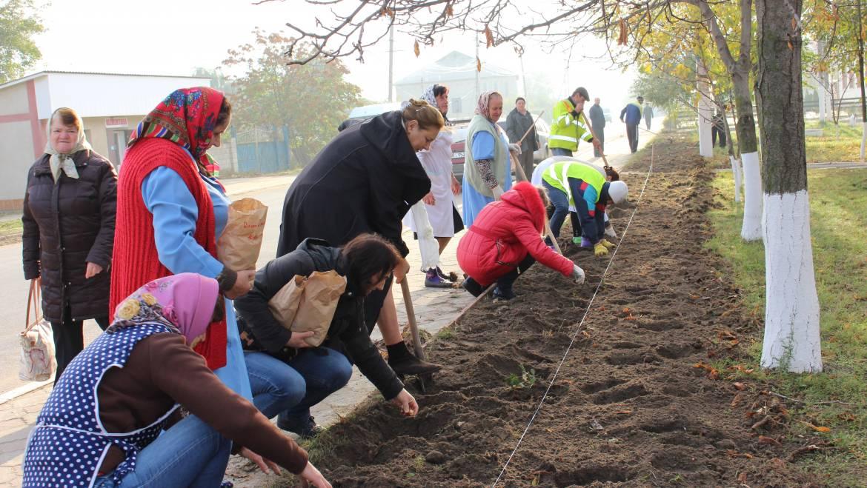 """Plantări în masă în cadrul proiectului """"Cetățenii participă-Comunitatea Prosperă"""""""