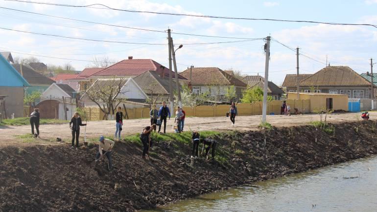 Înverzim parcurile din satul Costești