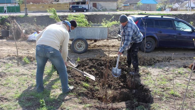 Primăria Costești invită locuitorii la o zi de înverzire și curățenie a satului