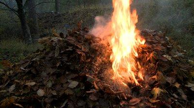 Dispoziție privind interzicerea arderii resturilor vegetale