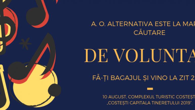 A.O. Alternativa recrutează voluntari pentru ZIT 2019